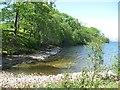 NN4308 : Shores of Loch Katrine by Richard Webb