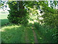 NZ4337 : Track to Southfield Farm by John Slater