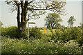 SK7940 : Footpath to Bottesford by Richard Croft