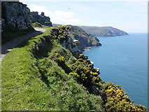 SS7049 : Cliff path, to the west of Lynton by Roger Cornfoot