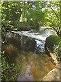 ST0410 : Weir on the Culm by Derek Harper