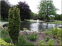 SK0573 : Pond, The Pavilion Gardens by Kenneth  Allen