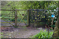 NU2516 : Turnstile on the Long Walk, Howick Hall Gardens by Phil Champion