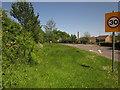ST0512 : Road verge outside Uffculme by Derek Harper
