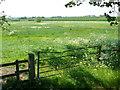 SP3868 : Flood Plain of the River Leam by Nigel Mykura