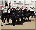TQ3080 : Horse Guards, Blues and Royals by Colin Smith