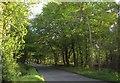 SX9182 : Road across Haldon by Derek Harper