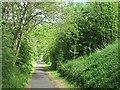 NS5779 : Blane Valley Railway by Richard Webb