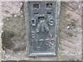 NY7914 : Ordnance Survey  Flush Bracket 11753 by Peter Wood