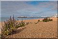 TQ3203 : Towards Palace Pier by Ian Capper