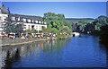 SD3686 : River Leven at Newby Bridge by Trevor Rickard