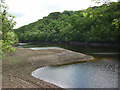 SD5248 : Low water level at Grizedale Reservoir by Karl and Ali
