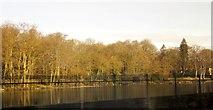 SK3281 : Mill Pond, Abbeydale by Derek Harper