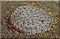 J4078 : Adams manhole cover, Holywood (2) by Albert Bridge