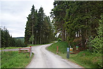 SN8587 : An entrance to the Hafren Forest by Bill Boaden