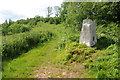 SO4812 : Trig point in Long Hill Wood by Philip Halling
