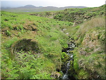 NR4767 : Allt nan Ruadhag by Chris Wimbush