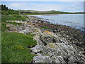 NR5370 : Shoreline towards Corran by Chris Wimbush