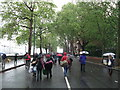 TQ2777 : Going home in the rain, Chelsea Embankment by David Anstiss