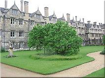 SP5106 : Fellows' Garden Sundial Lawn, Merton College by Virginia Knight