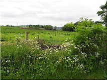 H4174 : Gillygooly Townland by Kenneth  Allen