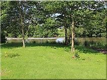 SP1452 : River Avon, Welford-on-Avon by David P Howard