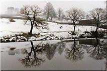 SE0063 : Winter Reflection, River Wharfe near Grassington by John M Wheatley