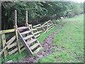 NZ1218 : Ladder stile for footpath to Little Newsham by peter robinson
