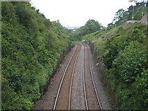 SX9062 : Railway cutting on Livermead Head by David Smith