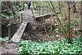 TQ8932 : Footbridge, High Weald Landscape Trail by N Chadwick