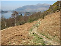 NY2719 : The path from Ashness Bridge to Great Wood by David Purchase