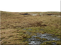 SN8188 : On the slopes of Pumlumon Arwystli by David Purchase