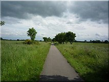 SE6045 : Path to Selby by DS Pugh