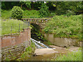 SJ8382 : Bridge over Goit at Quarry Bank Mill by David Dixon
