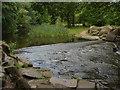 SU9768 : Virginia Water outflow by Alan Hunt