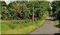 J2467 : The Pond Park Road, Lisburn (1) by Albert Bridge