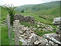 NY4215 : Ruined building in Bannerdale by Christine Johnstone