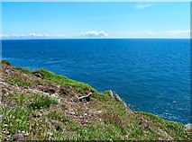 NX4533 : View from Burrow Head by Andy Farrington