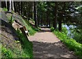 SE2000 : Langsett Reservoir path along the north bank by Neil Theasby