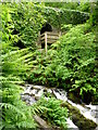 """N7897 : """"Cromwell's Bridge� in Dun na Ri Forest Park by D Gore"""