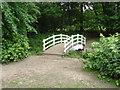 SU9869 : The white bridge by Alan Hunt