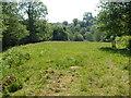 SX6788 : Field by Forder Brook by Derek Harper