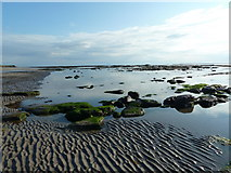 NU0052 : Rocky foreshore north of the Pier, Berwick-Upon-Tweed by Alexander P Kapp