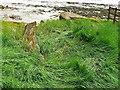 SO6804 : Hulk, Ships Graveyard, Purton, Gloucestershire (5) by Brian Robert Marshall