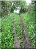NZ8706 : Tom  Bell  Lane  (Path) by Martin Dawes