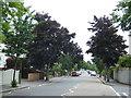 TQ0996 : Cassiobury Park Avenue, Watford by Malc McDonald