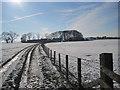 NY9876 : Track to Cheviot Farm by Les Hull