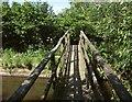 SY2394 : Footbridge across the Coly by Derek Harper