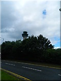TL5523 : Radio Control Tower Looming over Trees by Finlay Cox