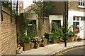 TQ3082 : Pavement garden, King's Cross by Julian Osley